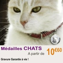 medailles_chat